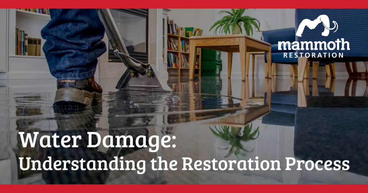 Mammoth-Blog-Feature_Water-Damage-1-1