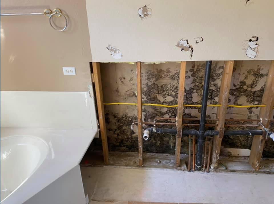 restoration services in Flagstaff, AZ